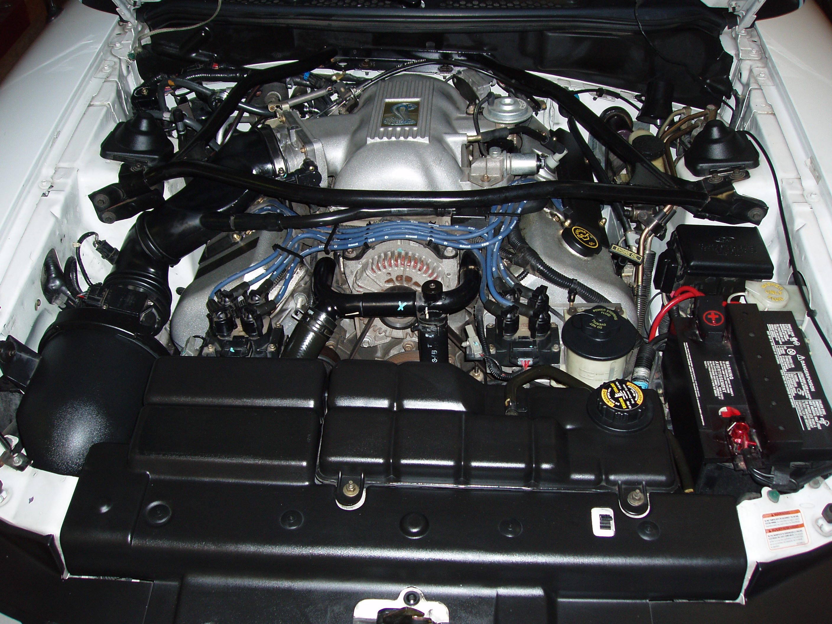 under the hood these high res pictures are of my stock cobra engine before the installation of the kenne bell supercharger the car including the engine are at about 50k